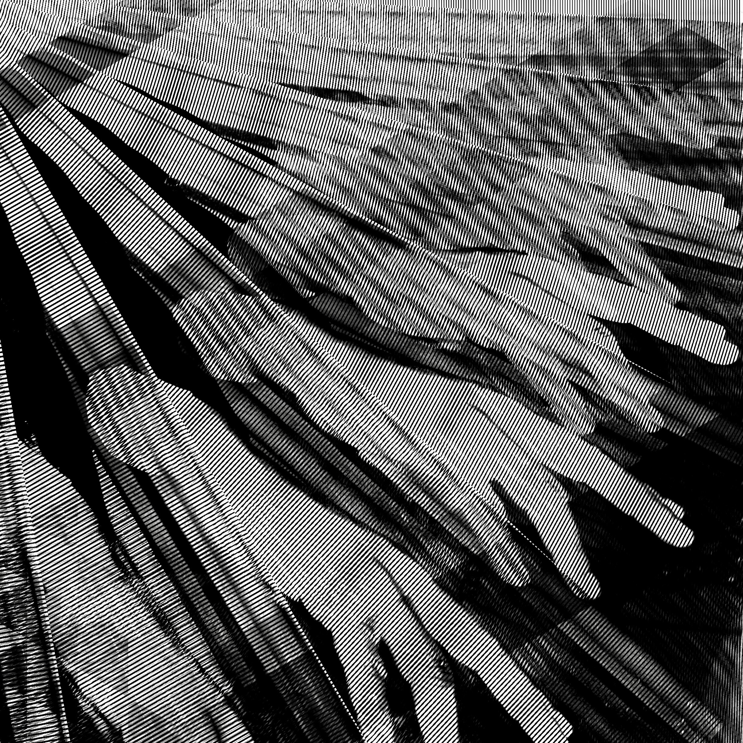 Alexander Spang | Artwork